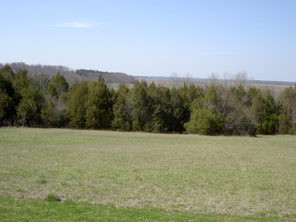 Along the Natchez Trace Pkwy