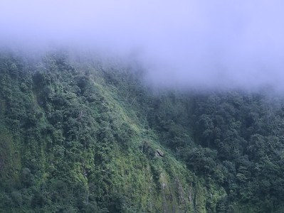 Lifting Mist