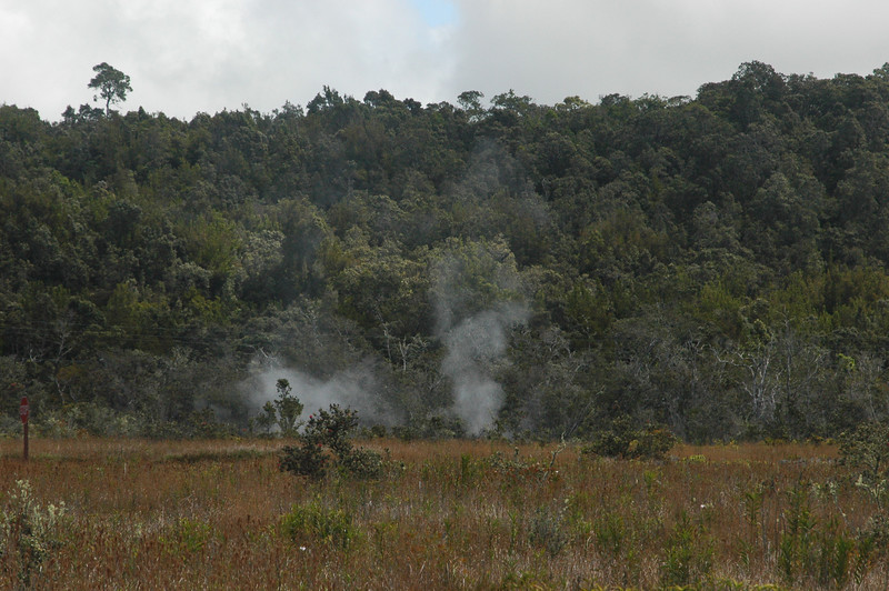 Steam escaping from the ground on Kilauea.