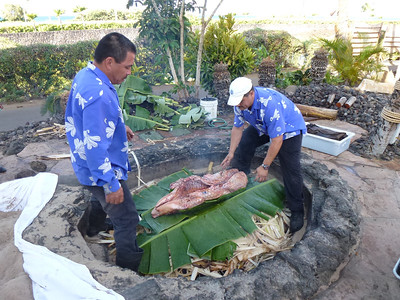 They cover the hot lava rocks with wet banana leaves, then layer the palm fronds on top before placing the pig in the imu.