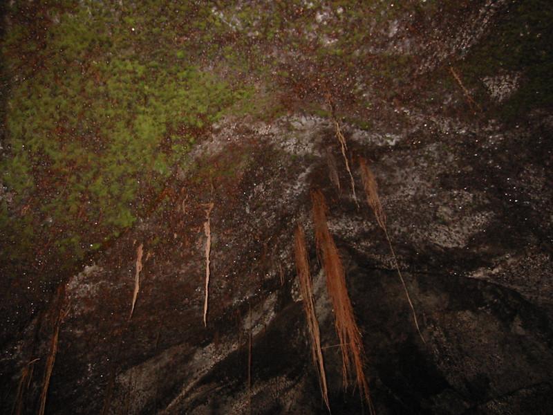 Inside the lava tube.
