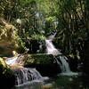 Onomea Falls.