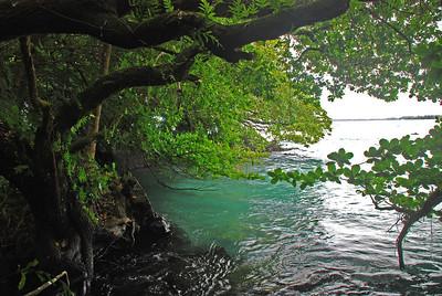 Shipman's Lagoon; Big Island