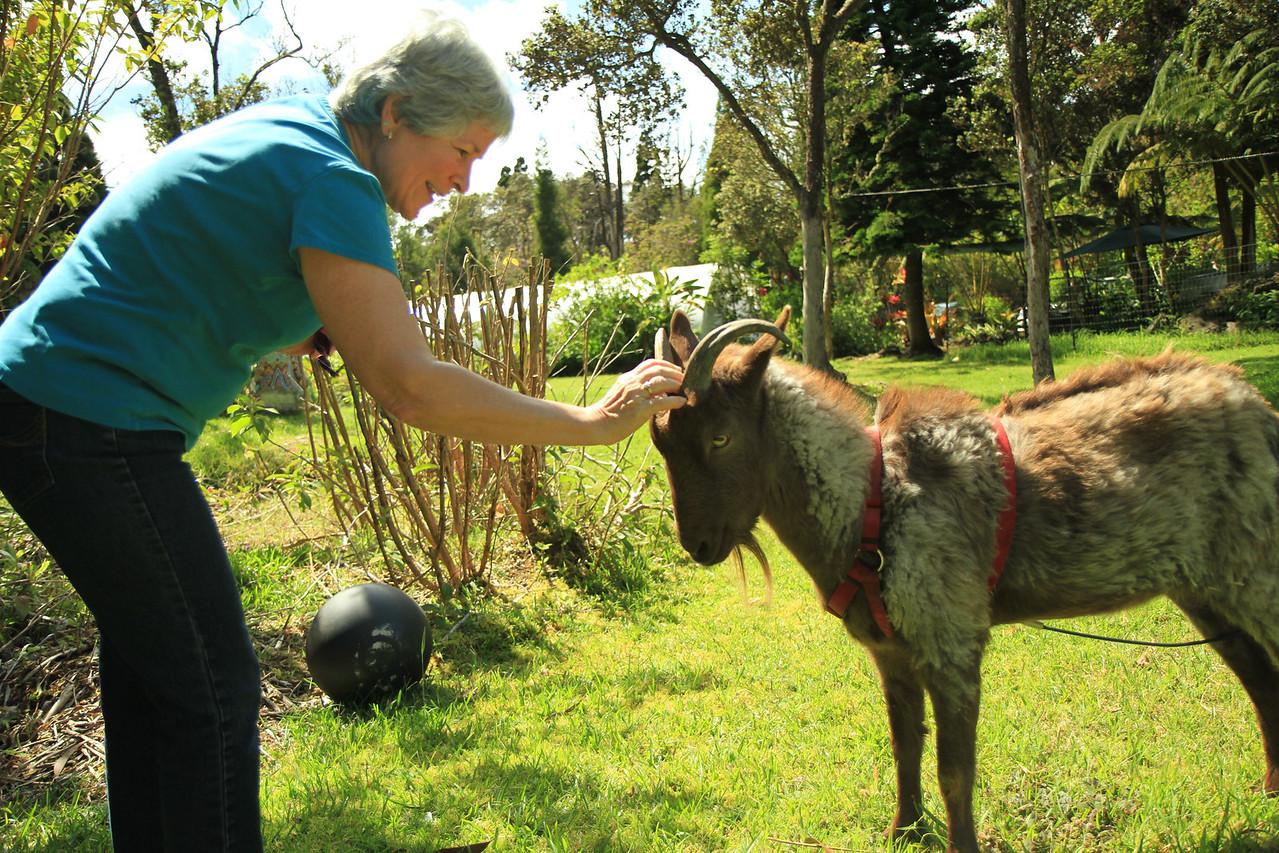 Amy F & a goat