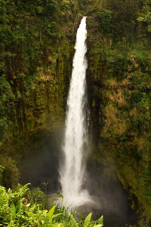 Fifth & final waterfall of the day - Akaka Falls.