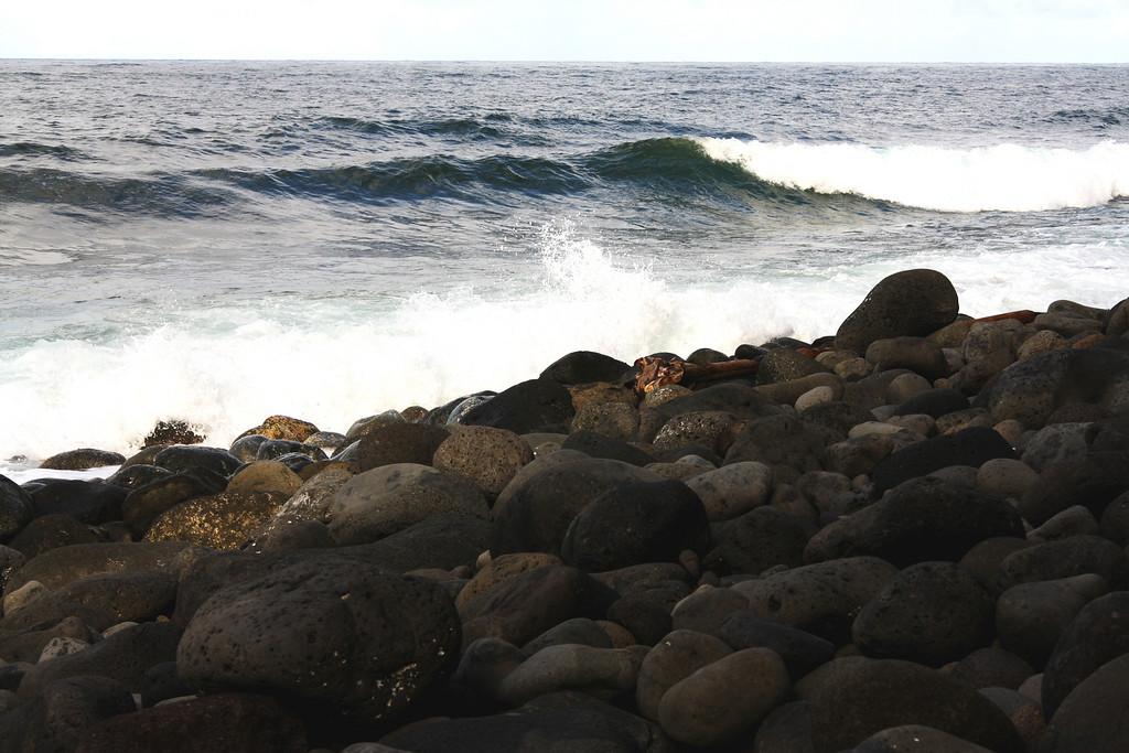 Shoreline and rocks.