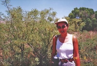 7/27/97 Mesquite Trail. Big Morongo Canyon Preserve Little San Bernardino Mtns, Morongo Valley, San Bernardino County, CA.
