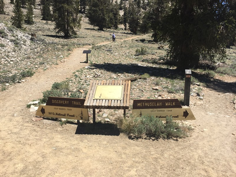 Trailhead for the two trails.