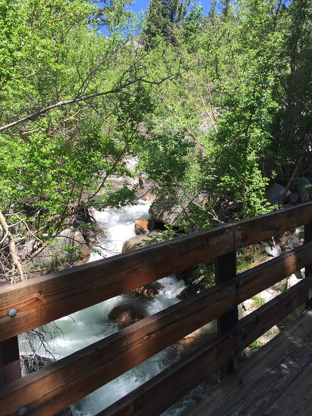 We hit another bridge at the top of the First Falls, then the trail flattened out a bit, but still uphill the whole way.