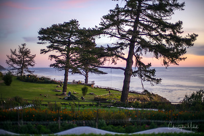 The grounds of the Esalen Institute at sunset.