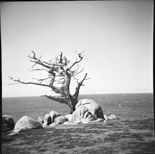 Ragged Point, 1960
