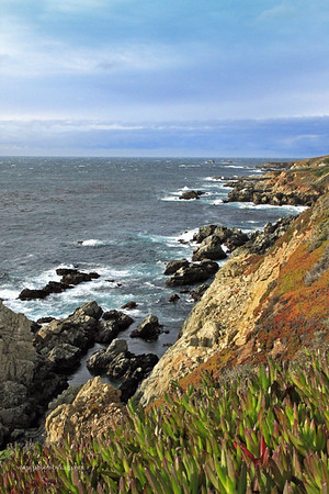 Big Sur Ocean View