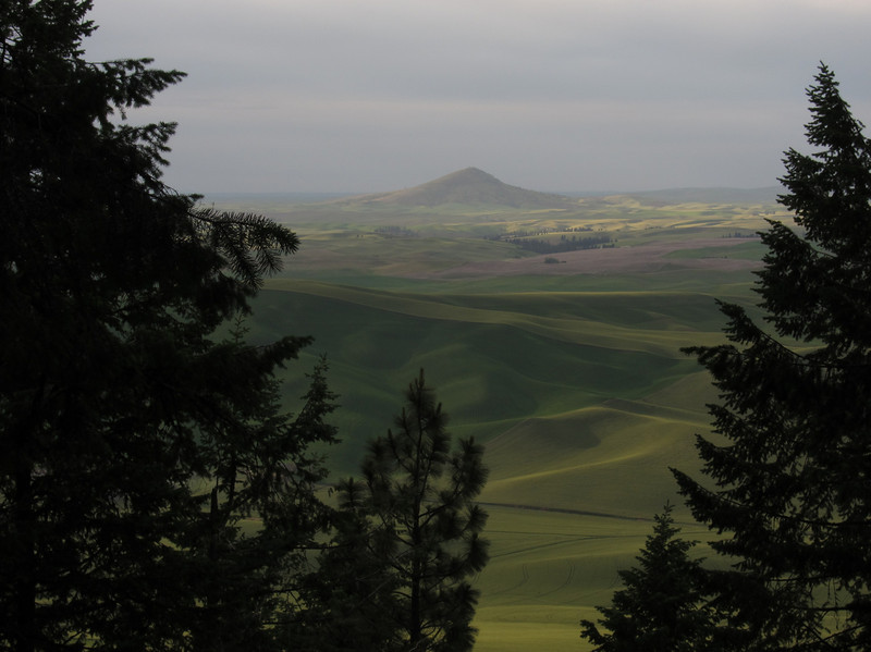 Looking north from Kamiak Butte.