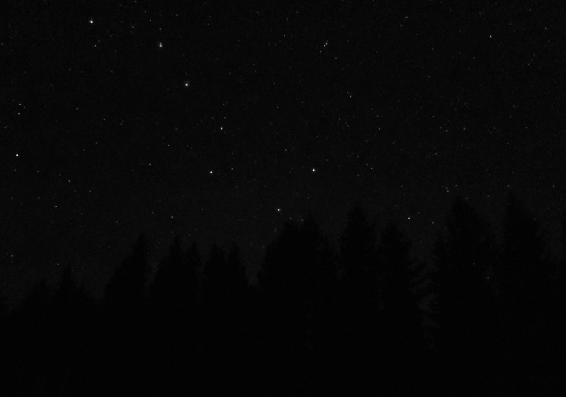 I heard animals snarfling in the darkness while I was taking these pictures. I think they were elk, but when one sounded a lot closer while I was taking pictures of the Big Dipper, I scampered back into the lodge.