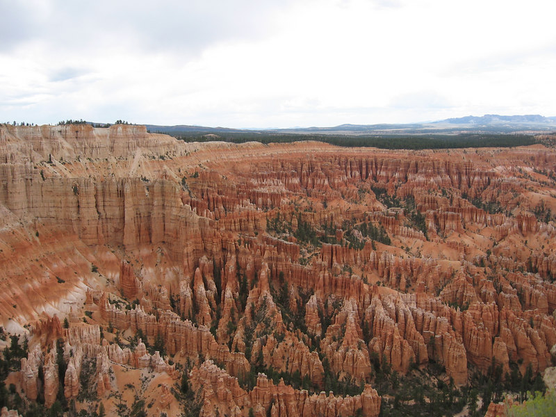 As you can see, this day WAS more spectacular than the previous ones. This is part of the view from Bryce Point.