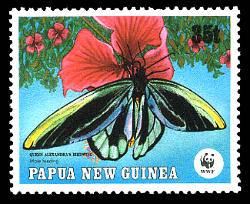 Papua New Guinea stamp with Alexandra birdwing (2002).
