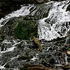 Birthday Road Trip - Dunnings Spring Waterfall