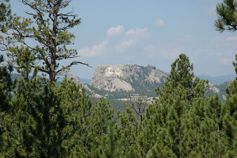 MT. Rushmore from Far