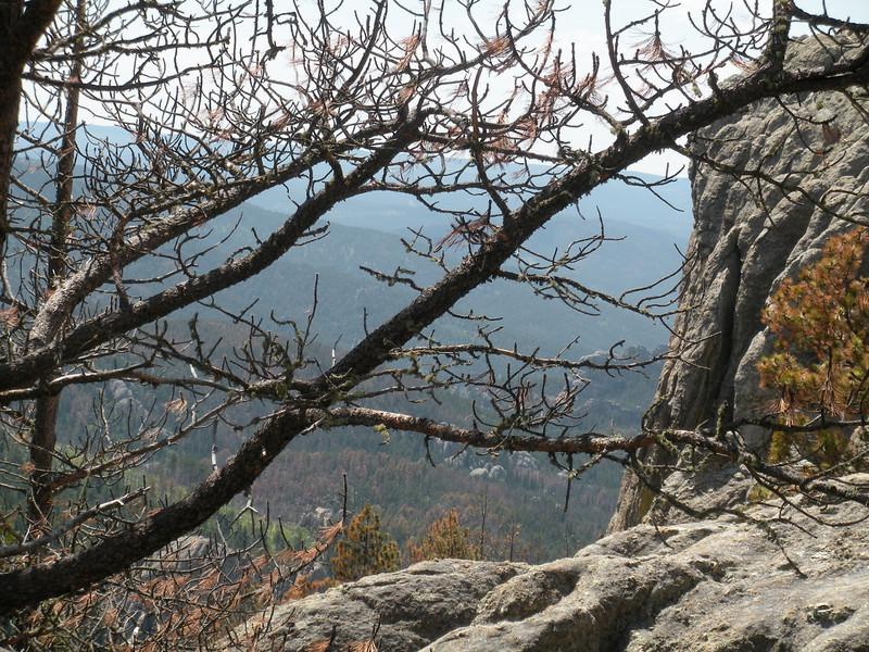 10 - Harney Peak (24)