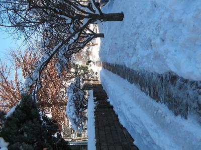 Blizzard 2007