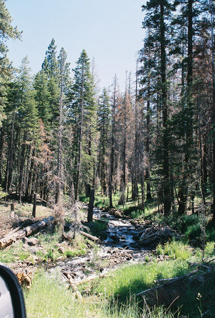 7/4/05 Cty Rd. 258 (to Blue Lake) @Forest Service Rd. 64, Lassen County, CA