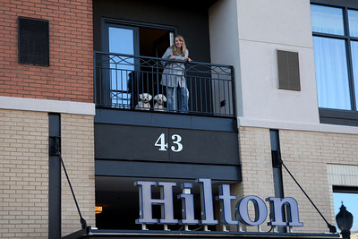 Krista, Lexington, and Canon @ The Hilton in Biltmore Park, Asheville, NC