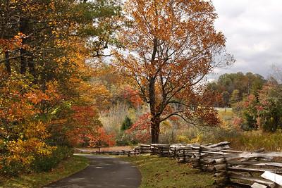 Autumn Fenceline on the Parkway