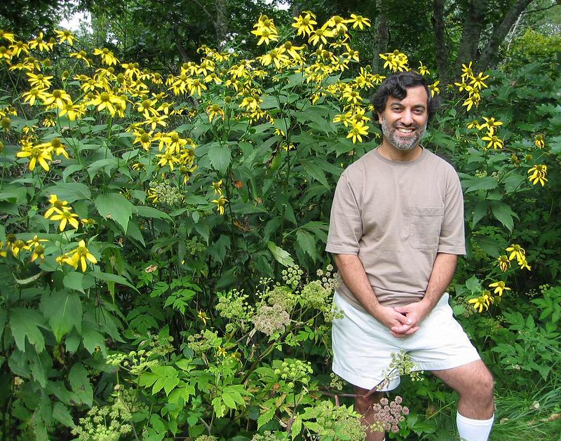 20040904 Dilip with yellow flowers near Mt Pisgah, Blue Ridge Mntns 2