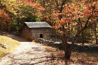 Autumn on the Farm