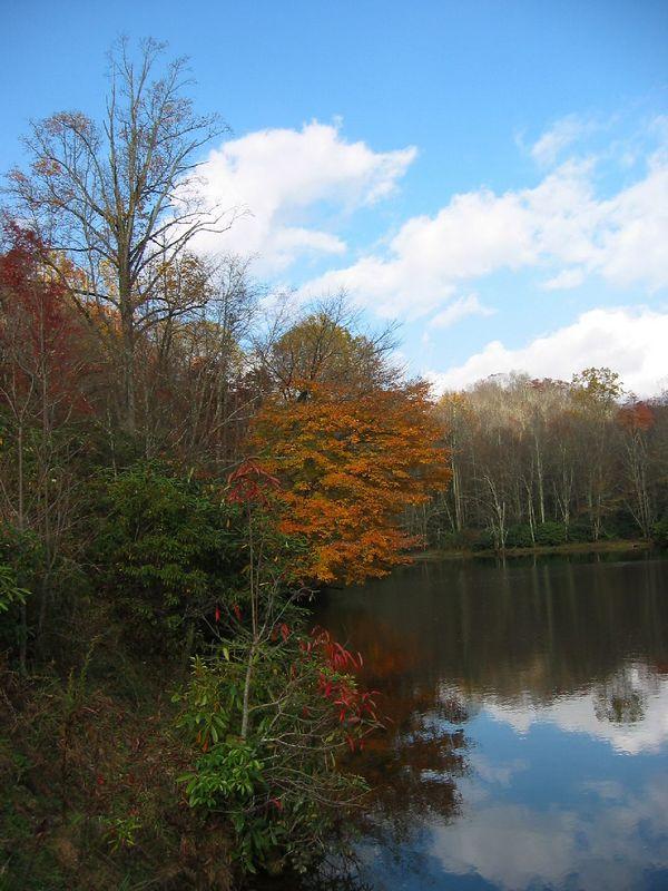 00aFavorite Fall scene in reflective pond near Price Lake