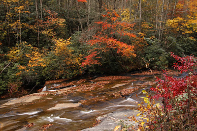 Davidson River in Pisgah National Forest