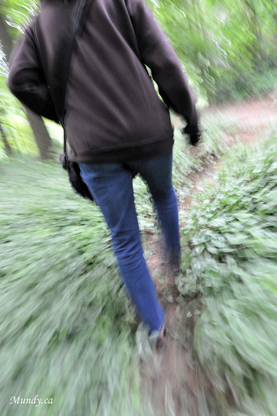 Walking one of the trails ...