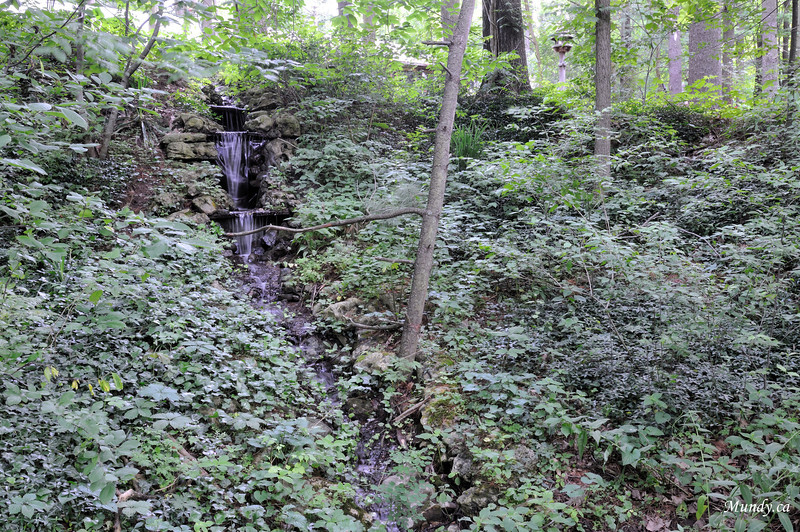 One of 2 little waterfalls on the property.