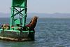 Boat_Ride_Labor_Day_2010023