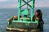 Boat_Ride_Labor_Day_2010027
