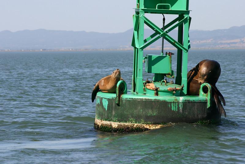 Boat_Ride_Labor_Day_2010025