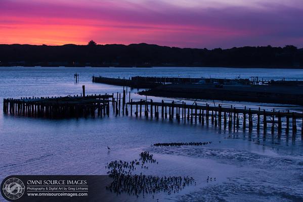 Bodega Bay, CA