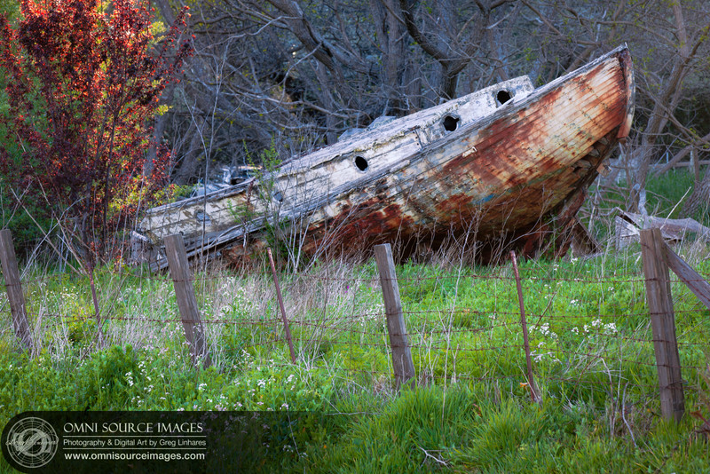 Shipwrecked on the Farm