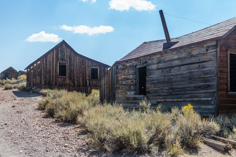 Old Dwelling within Bodie