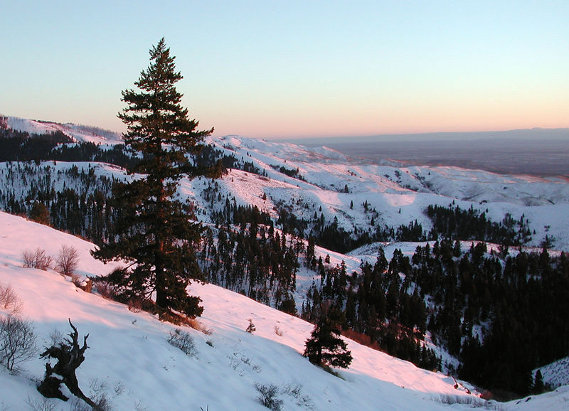 I took this picture on the way back down the mountain from Bogus Basin ski slopes on February 9, 2006.  The pink light was amazing.  I would have taken more pictures but there weren't enough turn-outs where I could stop.