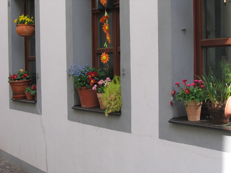 Flowers are everywhere, including outdoor window sills.