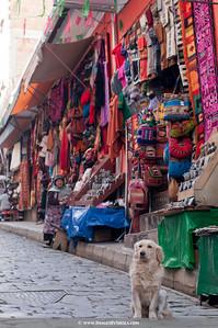 ImagesBySheila_Bolivia_SRB1873