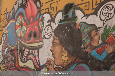 ImagesBySheila_Bolivia_SRB1835