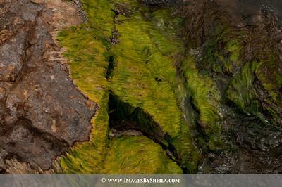 ImagesBySheila_Bolivia_SRB2333