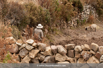 ImagesBySheila_Bolivia_SRB2523