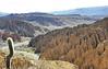 Entrada al Parque Nacional Eduardo Avaroa