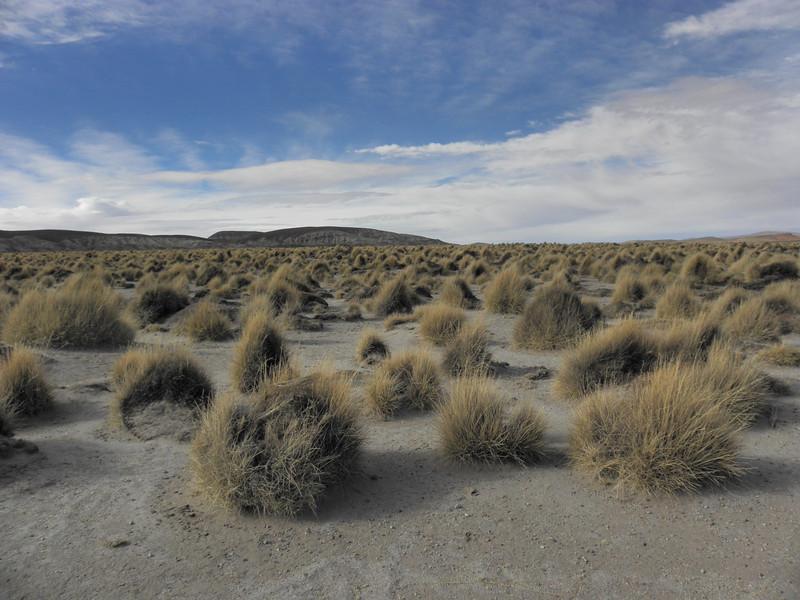 Parque Nacional Eduardo Avaroa