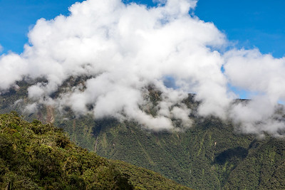 Yungas North