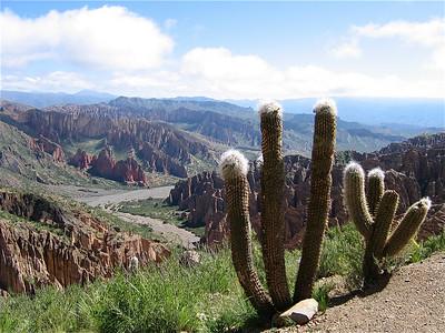 Sillar, nabij Tupiza, Bolivia