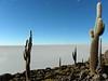 Salar de Uyuni, desde la Isla del Pescado en el centro del salar